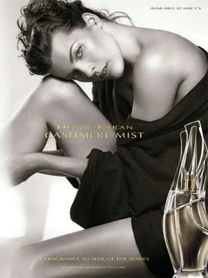 Donna Karan Cashmere Mist perfume