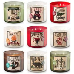 Bath and Body Works Camp Winter Candles Collection